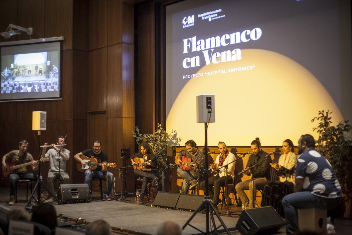 FLAMENCO_EN_VENA_5